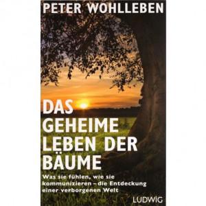 """Buch """"Das geheime Leben der Bäume"""" von Peter Wohlleben"""